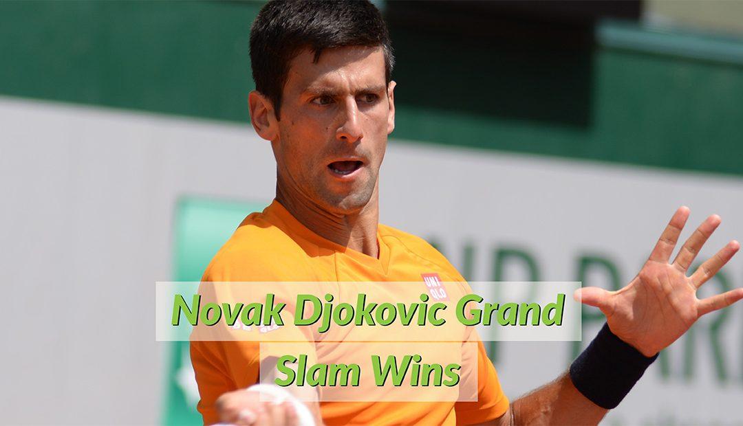 Novak Djokovic Grand Slam Wins (Infographic)