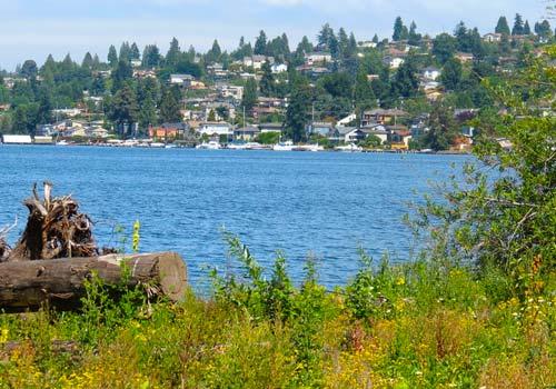Shoreline-Seattle WA View of Ocean